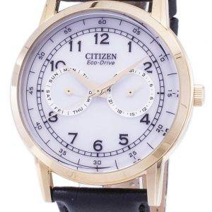 Citizen Eco-Drive Day And Date Sub-Dials AO9003-16A Men's Watch